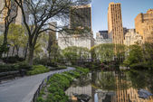 Spring in Central Park — Stock fotografie