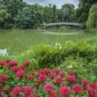 Central Park, New York City — Stock Photo #28566705