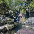 Ricketts Glen harbors Glens Natural Area, Adams falls — Stock Photo