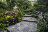 Shakespeare Garden Central Park, New York City — Stock Photo