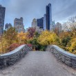 Gapstow bridge Central Park, New York City — Stock Photo #36123223