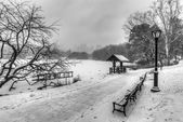 Central Park, New York City during snow storm — Stock fotografie