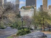 Central Park, New York City — Stock Photo