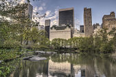 Central park, nueva york — Foto de Stock