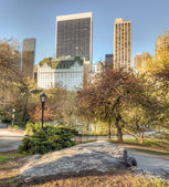 Parc central, new york city — Photo