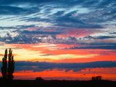 Colourful sky — Stock Photo
