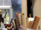 Cones — Stock Photo