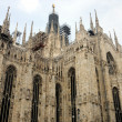 Cathedral of Milan — Stock Photo #27217041