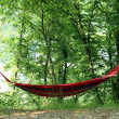 Hammock — Stock Photo #29250173
