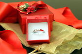 Kroužek v krabici — Stock fotografie