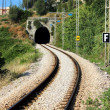 Railway — Stock Photo #33707947