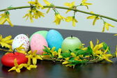 Colored eggs — Stockfoto