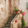 Stone steps to rustic house - Stock Photo