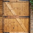 Wooden door — Stock Photo #13129354
