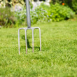 Gardening fork — Stock Photo