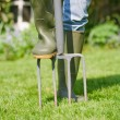 Stock Photo: Aerating lawn