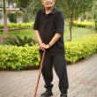 Old Asian man with walking stick — Stock Photo #13129916