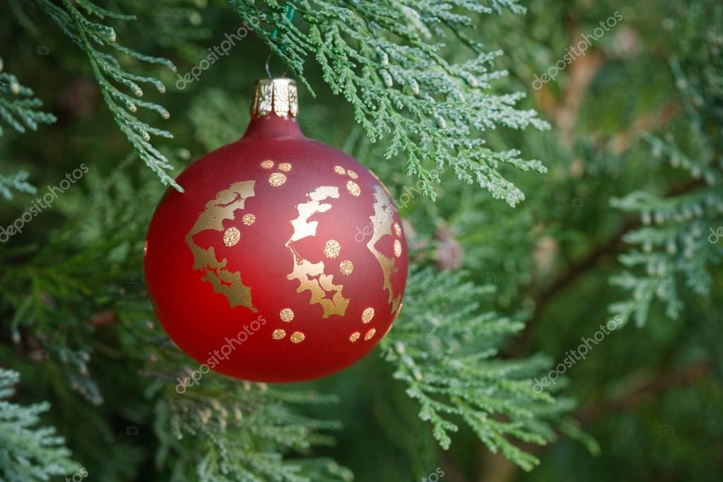 Closeup of a christmas decoration hanging in a real christmas tree — Stock Photo #13129220