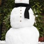 Snowman — Stock Photo #13203585
