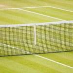 Grass tennis court — Stock Photo