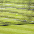 Tennis ball and court — Stock Photo #13203854