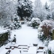 Snow covered garden and patio - Stock Photo