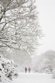 Walking in winter — Stock Photo