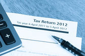 Tax return form 2012 — Stock Photo