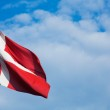 Danish Flag — Stock Photo #13275001