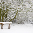 Stock Photo: Snow covered bench