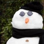 Snowman — Stock Photo #13275781