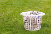 Laundry basket on grass — Stok fotoğraf