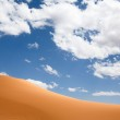 Coral Pink Sand Dunes — Stock Photo #18886327