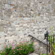 Garden wall copyspace - Stock Photo