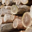 Royalty-Free Stock Photo: Log stack