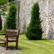 Formal garden — Stock Photo #21484665