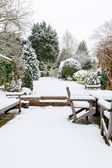 British garden in winter — Stock Photo