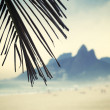 Rio de Janeiro Ipanema Beach Two Brothers Mountain Brazil — Stock Photo
