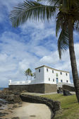 Salvador Brazil Fort Santa Maria in Barra — 图库照片