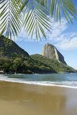Sugarloaf Mountain Rio de Janeiro Brazil — Stock Photo