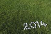 Football 2014 Message Soccer Balls Green Grass — Stock Photo