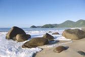 Scenic Brazilian Beach Trindade Paraty Brazil — Stockfoto