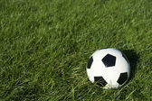 Classic Black and White Soccer Ball Football on Green Grass — Stock Photo