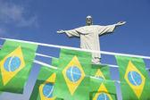 コルコバード、リオデジャネイロでブラジルの国旗ホオジロ — ストック写真