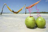 Man in Hammock Brazilian Beach with Coconuts — Stock Photo