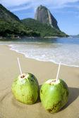 Brazilian Coco Gelado Coconuts Red Beach Rio de Janeiro — Stock Photo