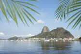 Sugarloaf Pao de Acucar Mountain Rio de Janeiro — Stock Photo