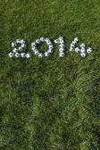 çimenlerin üzerinde futbol futbol topları ile yapılan 2014 için mesaj — Stok fotoğraf