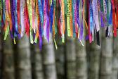 Colorful Brazilian Carnival Wish Ribbons Bamboo Forest Jungle — Stock Photo