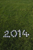 Message for 2014 Made with Football Soccer Balls on Grass — Stock Photo